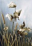 Cattails with Milkweed and Wren